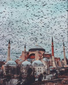 Turkish Architecture, Mosque Architecture, Istanbul City, Istanbul Travel, Beautiful Mosques, Most Beautiful Cities, Hagia Sophia Istanbul, Turkey Travel, Islamic Pictures