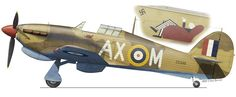 """Jerks Maclean Hawker Hurricane MK IIb """"MAX"""" that he flew with 1 sqdn in Navy Aircraft, Ww2 Aircraft, Fighter Aircraft, Military Aircraft, South African Air Force, Hawker Hurricane, Aircraft Painting, Airplane Art, Ww2 Planes"""