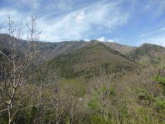 En direction du Mont #Aigoual..