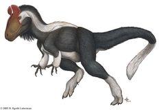 Cryolophosaurus / Вымершие животные / Твой Блог