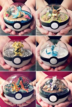 Any Pokemon fan would be thrilled to receive these Pokeball terrariums as a gift! Each of these terrariums feature one of your favorite Pokemon surrounded by its preferred environment, giving you a peek inside of what really goes on in a Pokeball. Pokemon Go, Pokemon Craft, Pokemon Diys, Pokemon Fusion, Pokemon Decor, Pokemon Stuff, How To Draw Pokemon, Pokemon Party Decorations, Clay Pokemon
