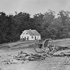 Alexander Gardner Pioneered Battlefield Photography in the Civil War: Alexander Gardner's Photographs of Antietam Became a Sensation in New York City