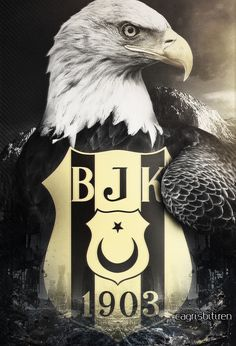 See what your favorite celebrities and it-girls wear on and off the red carpet. Black Eagle, Eagles, Iphone Wallpaper, Phone Backgrounds, Istanbul, Anime, The Incredibles, Bird, Ottoman