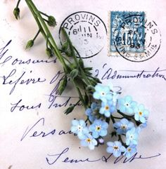 The forget-me-nots and the letter to remember.......