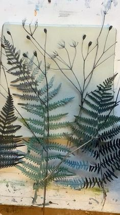 """Jennifer Douglas on Instagram: """"Using ferns , and delicate dried plants from the garden, this is an easy way to create a wintery feel for Xmas/ greeting cards. Start with…"""""""