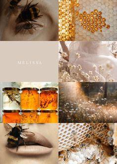 GREEK MYTHOLOGY AESTHETIC: Melissa According to Greek mythology, Melissa was a nymph who discovered and taught the use of honey and from whom bees were believed to have received their name. Witch Aesthetic, Aesthetic Collage, Aesthetic Vintage, Greek Mythology Gods, Greek Gods And Goddesses, Melissa Name, Greek Pantheon, Cute Love Memes, Picsart Tutorial
