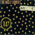 "Wallflowers - ""One Headlight"""