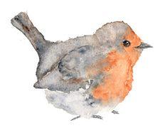 Aquarel, aquarel vogel schilderen, vogel kunst, dierlijke illustratie, vogel print, Engels robin, grijs, oranje, rustieke - 10 X 8 afdrukken