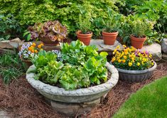 How many pots in your container garden can you fill with a bag of potting soil? Find the answer here.