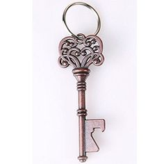 Honice Key Beer Bottle Opener Portable Metal Key-chain Ring Can Opener Stainless Steel Bar Tool Color Copper Silver(2 Colors Optional) ... (Antique Brass), http://www.amazon.com/dp/B01ENK5KU2/ref=cm_sw_r_pi_awdm_xs_XxCkyb2856HA2