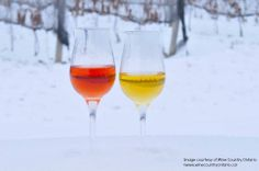 How stunning is this shot captured by Wine Country Ontario at the Niagara Icewine Festival? Read all about icewine on our blog.