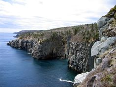 the coast of the Avalon Peninsula, Newfoundland