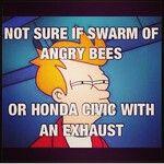 Haha Hondas
