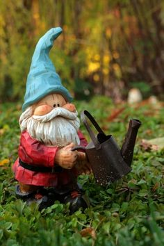 Gardening Gnome...and this one is cute!!!