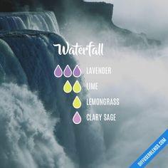The ultimate essential oil blend software! Create your aromatherapy blends or search through our extensive list. Essential Oils Guide, Essential Oil Scents, Essential Oil Diffuser Blends, Essential Oil Uses, Doterra Essential Oils, Design Facebook, Essential Oil Combinations, Aromatherapy Oils, Young Living