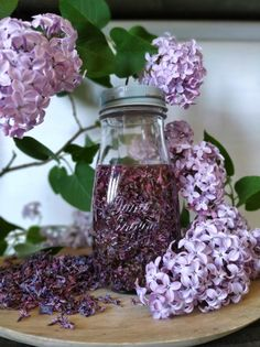 Herb Garden, Mason Jars, Glass Vase, Herbs, Beauty, Herbs Garden, Mason Jar, Herb, Beauty Illustration