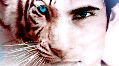 Ren - Tiger's curse