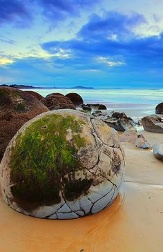 The Moeraki Boulders dot the beach of Koekohe located in New Zealand. They are extraordinarily huge and spherical in shape, some of which are two meters in diameter. The Moreaki Boulders were created during the Paleocene epoch. Travel Around The World, Around The Worlds, Moeraki Boulders, Scenic Photography, Natural Phenomena, Road Trip Usa, Landscape Photos, Natural Wonders, Bouldering
