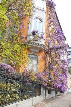 Torino,  Piemonte