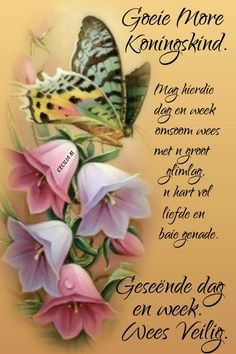 Good Morning Messages, Good Morning Quotes, Lekker Dag, Goeie More, Morning Greeting, Afrikaans, Words, Gallery, Good Morning Wishes