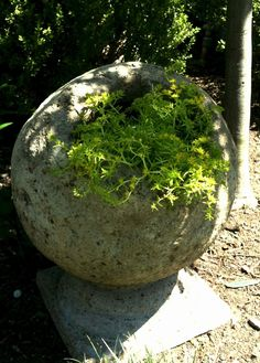Hypertufa Spheres | DIY - Cement/Concrete/Hypertufa / Hollow sphere for planting