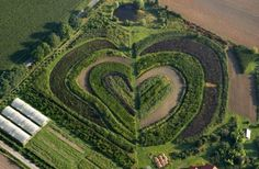STRANGE HEARTS IN NATURAL FORMATIONS - FARM FIELDS