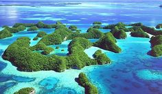 Palau Islands Photo Tour - http://www.yachtcharterfleet.com/palau-islands/palau-islands-luxury-yachting-gallery-1554.htm