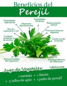 Beneficios del perejil. De Habitos.mx
