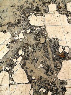 Floor geography