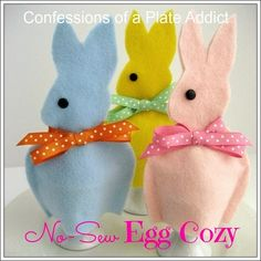 CONFESSIONS OF A PLATE ADDICT Last Minute Easter...Easy No-Sew Egg Cozy