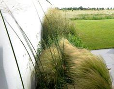 Andrew van Egmond garden design | NL Delft | 2010