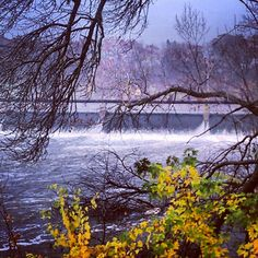 Another view of Appleton Locks, Mill District, Fox River Dam 1. View of the rushing Fox River and fall colors. Taken near the Atlas Coffee Mill and Fratello's. #appleton #wi #foxriver #fallcolors #fall #autumn #river (see my Instagram Board for another colorful view of this same spot.)