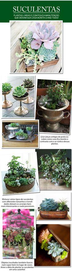 Suculentas: plantas lindas para a decoração da sua casa (blog www.clarissacabeda.com.br/casa/suculentas/)