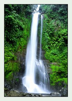 Gitgit Waterfall - Lovina, Bali - Check! Travel Around The World, In This World, Around The Worlds, Lovina Bali, Bali Waterfalls, Bali Lombok, Gili Island, Beautiful Places, Amazing Places