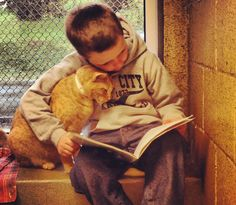 Kids Read to Homeless Cats and Everybody Wins By Caroline Golon    It's story time at the Animal Rescue League of Berks County in Birdsboro, Penn., where dozens of kids come to the shelter each week to read to the adoptable cats, improve their skills and provide comfort to cats awaiting their forever homes.