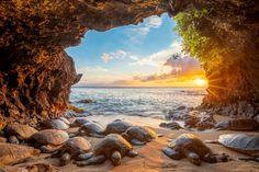 HAWAI'I Magazine's 2021 Photo Contest Winners - Hawaii Magazine National Geographic Photography, Your Shot, Photo Contest, Nice View, Gods Love, Hawaii, Beautiful Pictures, Coast, Discovery