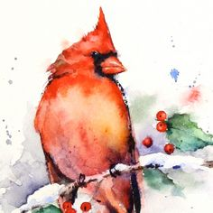 CARDINAL & Holly Winter Watercolor Print by Dean by DeanCrouserArt, $25.00