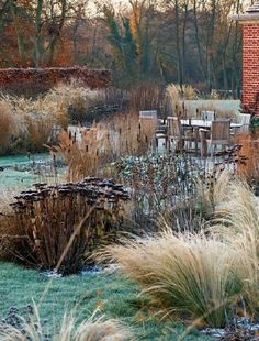 Moor Hatchess (Designed by Tom Stuart Smith) - This garden showcases how beautiful your garden can look during the winter months if you pick plants that show their architectural beauty when it is getting cold outside.