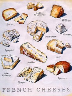 Pretty illustration of tasty #French #cheeses   #www.frenchriviera.com