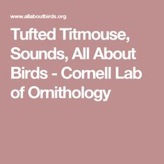 Tufted Titmouse, Sounds, All About Birds - Cornell Lab of Ornithology