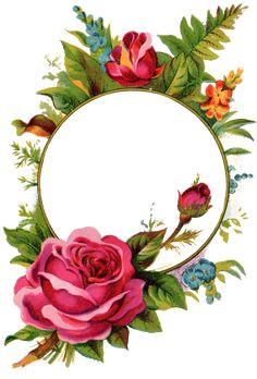 Pix For > Vintage Rose Frame