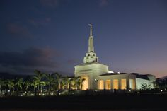 The Apia Samoa Temple lit up at twilight with a row of palm trees leading up to the front door.