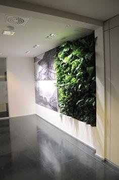 michelangelo travel Tecverde vertical garden green wall