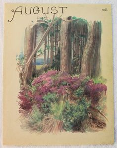 Vintage Botanical Book Plate - August - Quail - Heather -  Woodland - Country Diary of an Edwardian Lady - Edith Holden