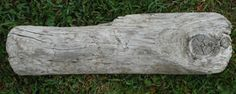 Buy Driftwood For Sale