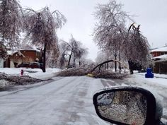 Gelo em Toronto.  Ice storm in Southern Ontario. Dec. 22 2013