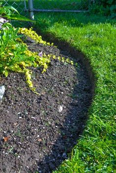 1. Cut a fresh edge on the grass side of your flowerbed with a half moon…