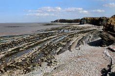 Many Fossil hunters by-pass West Somerset to get to Dorset's famous coastline, but they are missing something of a hidden gem Bristol Channel, Jurassic Coast, Ammonite, Somerset, Fossils, Bays, Hunters, Water, Anchor