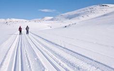 Ved foten av Hardangervidda har vi uendelige muligheter for skiturer. Langrennsløypene strekker seg i alle retninger fra Dagali Fjellpark. Vi har utstyr til utleie. Norway, Landscapes, Snow, Antiques, Outdoor, Summer, Paisajes, Antiquities, Outdoors