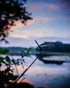Aire libre, un atardecer y el silencio de la naturaleza. Sal de donde estés y ¡No dejes de viajar!